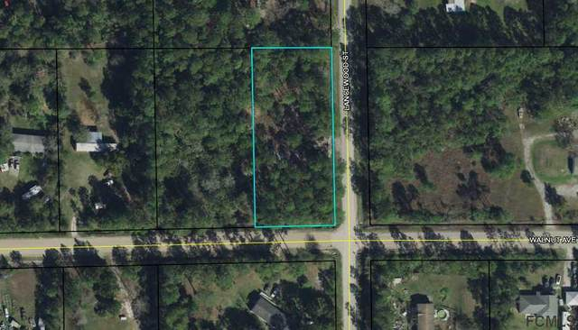4972 Walnut Avenue, Bunnell, FL 32110 (MLS #267534) :: Olde Florida Realty Group