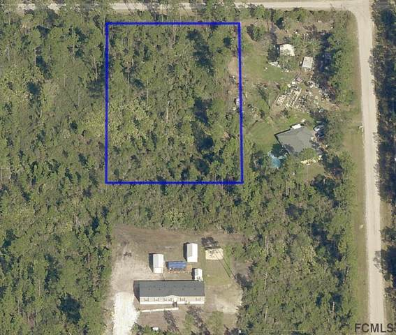 5513 Nutwood Ave, Bunnell, FL 32110 (MLS #267540) :: Olde Florida Realty Group