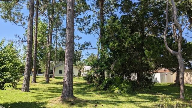 29 Westrock Lane, Palm Coast, FL 32164 (MLS #267555) :: Endless Summer Realty