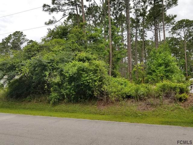 37 Post View Drive, Palm Coast, FL 32164 (MLS #267577) :: Olde Florida Realty Group