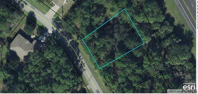 17 Birchwood Dr, Palm Coast, FL 32137 (MLS #267604) :: Noah Bailey Group