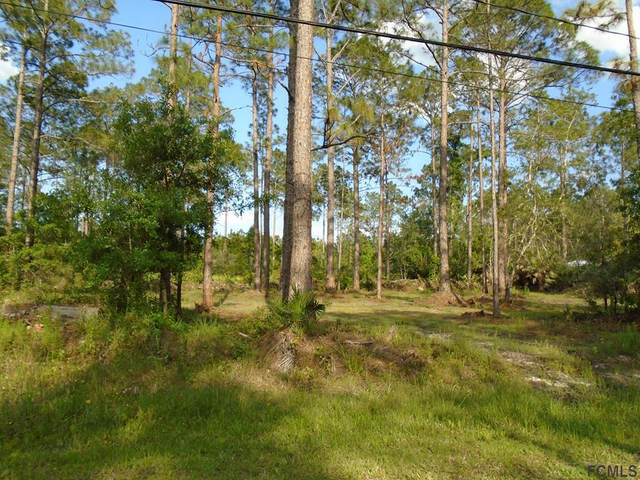 1433 Almond St., Bunnell, FL 32110 (MLS #267787) :: Noah Bailey Group