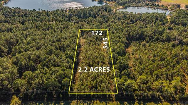 9100 Us Hwy 1 S, Bunnell, FL 32110 (MLS #267956) :: Olde Florida Realty Group