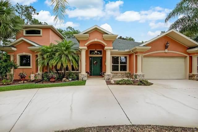 107 Edward Dr, Palm Coast, FL 32164 (MLS #268272) :: Noah Bailey Group