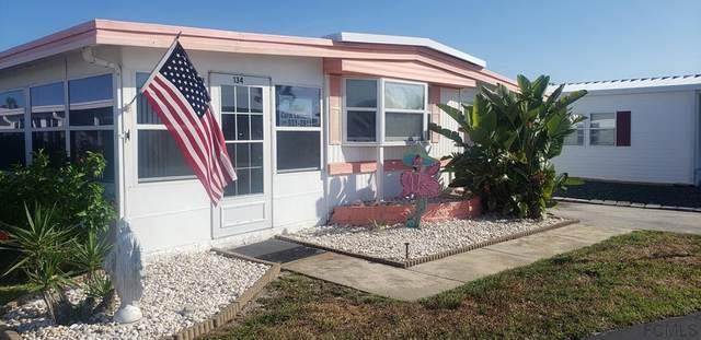 Beverly Beach, FL 32136 :: Endless Summer Realty