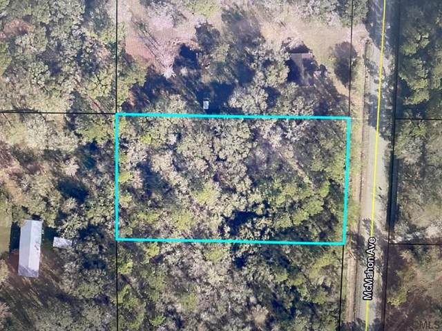 9865 Mcmahon Ave, Hastings, FL 32145 (MLS #268527) :: NextHome At The Beach II