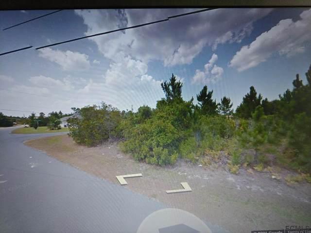 14 Buffalo Grove Place, Palm Coast, FL 32137 (MLS #268532) :: NextHome At The Beach II