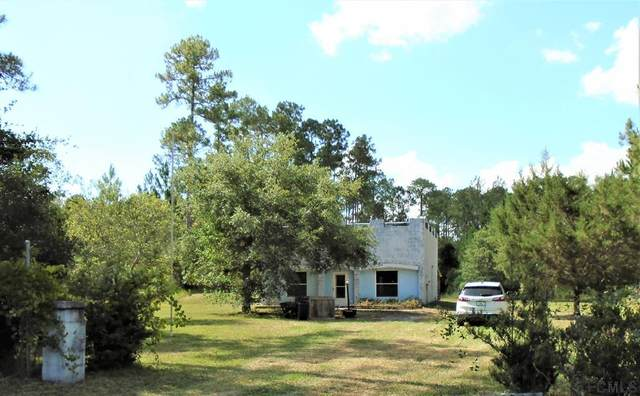 6198 Nutwood Ave, Bunnell, FL 32110 (MLS #268533) :: NextHome At The Beach II