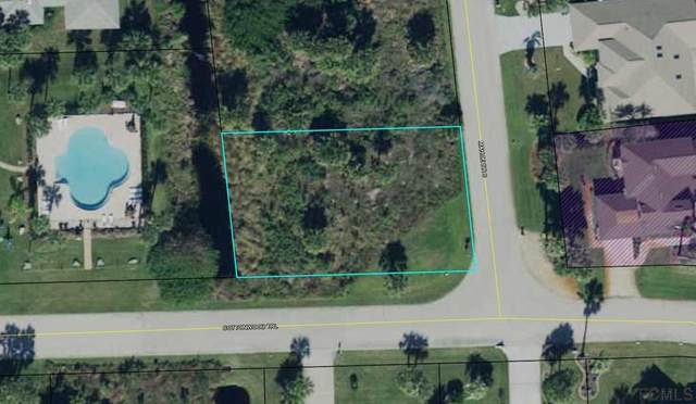 24 Mahoe Dr S, Palm Coast, FL 32137 (MLS #268596) :: Olde Florida Realty Group