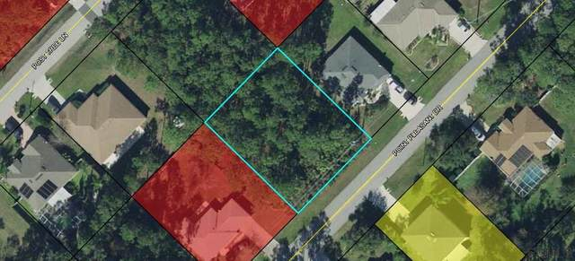 168 Point Pleasant Drive, Palm Coast, FL 32164 (MLS #268614) :: Olde Florida Realty Group