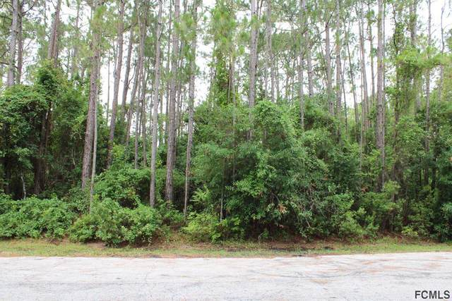 2 Richfield Ln, Palm Coast, FL 32164 (MLS #268634) :: Noah Bailey Group