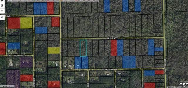 3853 Apple Ave, Bunnell, FL 32110 (MLS #268702) :: Noah Bailey Group