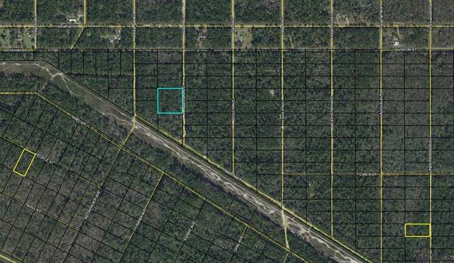 0 Allison Ave, Bunnell, FL 32110 (MLS #268816) :: NextHome At The Beach II