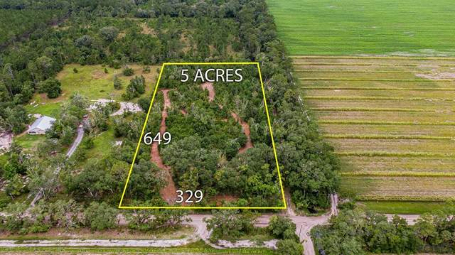 1100 County Road 2007, Bunnell, FL 32110 (MLS #268830) :: NextHome At The Beach II