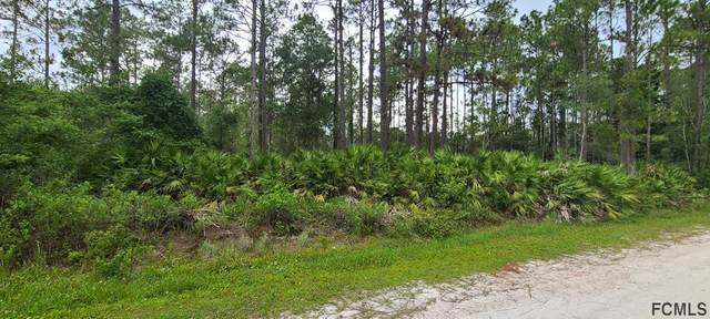 2278 Holly Lane, Bunnell, FL 32110 (MLS #268842) :: NextHome At The Beach II