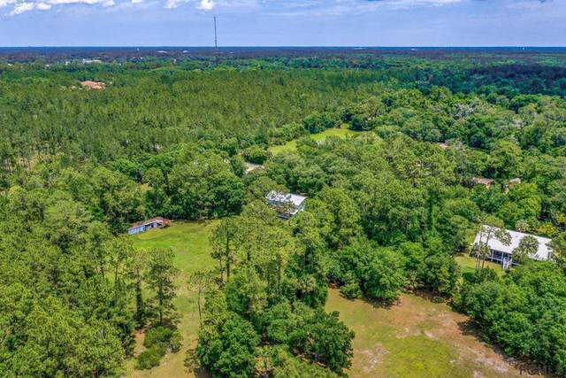 XXXX Old Haw Creek Rd, Bunnell, FL 32110 (MLS #269006) :: Olde Florida Realty Group
