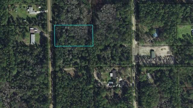 1625 Papaya Street, Bunnell, FL 32110 (MLS #269540) :: Keller Williams Realty Atlantic Partners St. Augustine