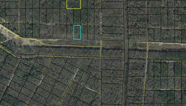 0000 Libby St, Bunnell, FL 32110 (MLS #269618) :: NextHome At The Beach II