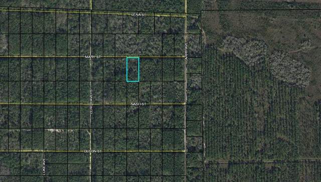 0000 Mary St, Bunnell, FL 32110 (MLS #269622) :: NextHome At The Beach II