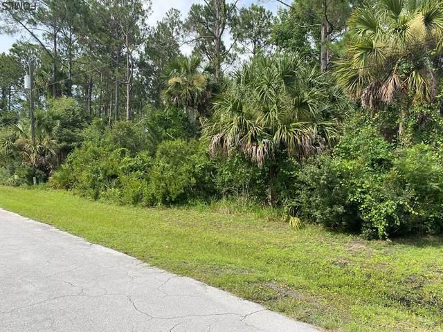 7 Sedley Place, Palm Coast, FL 32164 (MLS #269625) :: NextHome At The Beach II