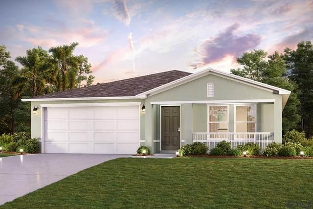 8 Plumtree Place, Palm Coast, FL 32164 (MLS #269723) :: NextHome At The Beach II