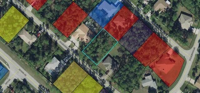 35 Ramblewood Drive, Palm Coast, FL 32164 (MLS #269765) :: Memory Hopkins Real Estate