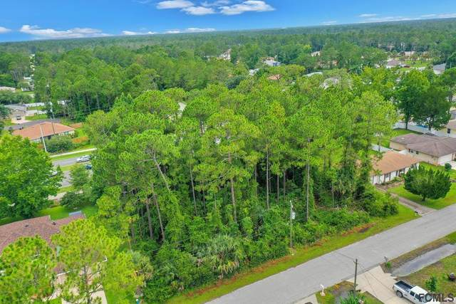 16 Potterville Lane, Palm Coast, FL 32164 (MLS #269773) :: Memory Hopkins Real Estate