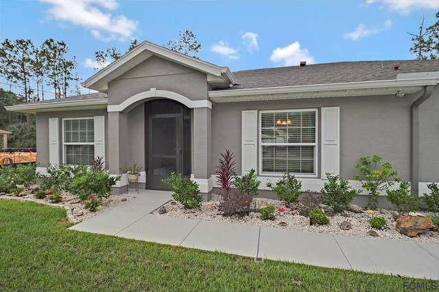 39 Rickenbacker Drive, Palm Coast, FL 32164 (MLS #269801) :: Endless Summer Realty