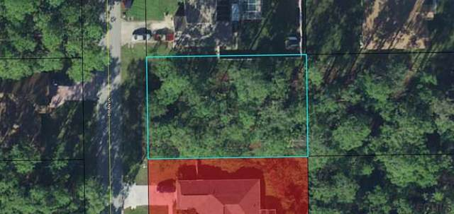 6 Brian Lane, Palm Coast, FL 32137 (MLS #269839) :: Olde Florida Realty Group