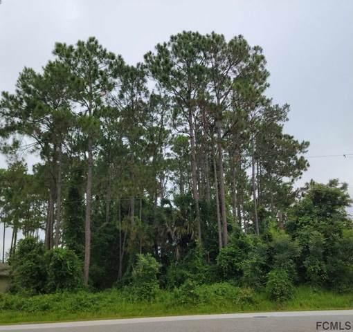 102 Bayside Dr, Palm Coast, FL 32137 (MLS #269841) :: Olde Florida Realty Group