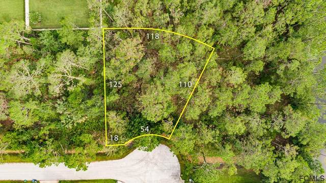 9 Kaslo Ct, Palm Coast, FL 32164 (MLS #269845) :: Olde Florida Realty Group