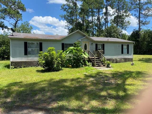 2821 Avocado Blvd, Bunnell, FL 32110 (MLS #269854) :: Olde Florida Realty Group