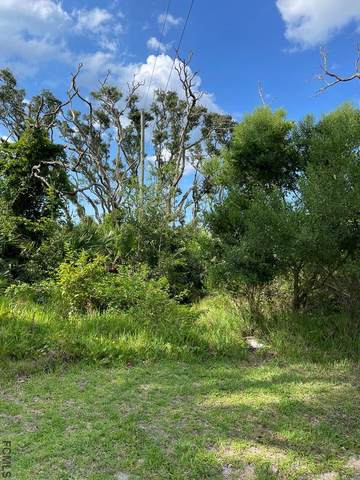 16 NE Sycamore Terrace, Palm Coast, FL 32137 (MLS #269860) :: Olde Florida Realty Group