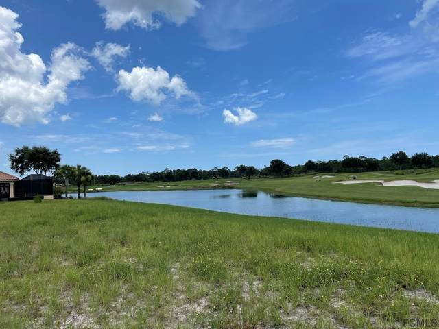 361 E Hibiscus Way, Palm Coast, FL 32137 (MLS #270200) :: Olde Florida Realty Group