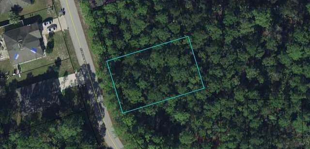 43 Secretary Trail, Palm Coast, FL 32164 (MLS #271281) :: NextHome At The Beach II