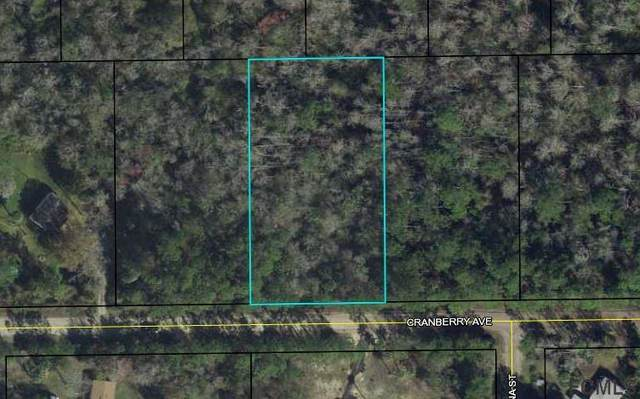 3754 Cranberry Avenue, Bunnell, FL 32110 (MLS #271754) :: Endless Summer Realty