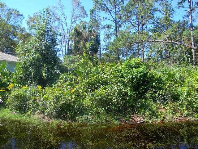 29 Ponderosa Lane, Palm Coast, FL 32164 (MLS #271957) :: Endless Summer Realty