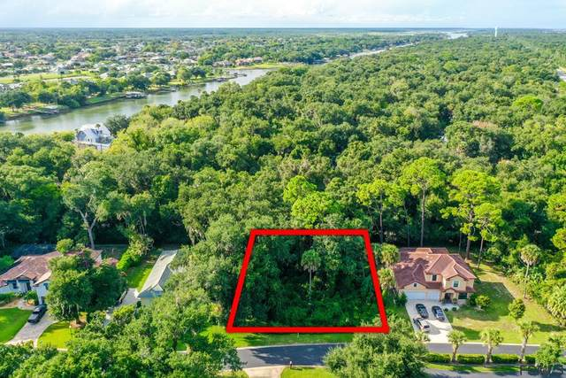 15 River Oaks Way, Palm Coast, FL 32137 (MLS #271983) :: The DJ & Lindsey Team