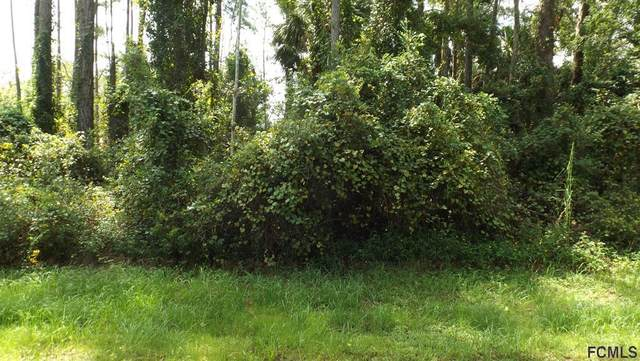 10 Pineash Ln, Palm Coast, FL 32164 (MLS #271994) :: Endless Summer Realty