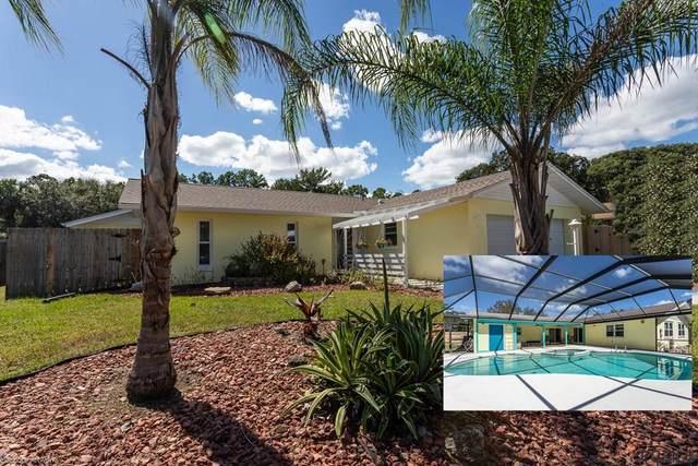 20 Blyth Place, Palm Coast, FL 32137 (MLS #272016) :: Dalton Wade Real Estate Group