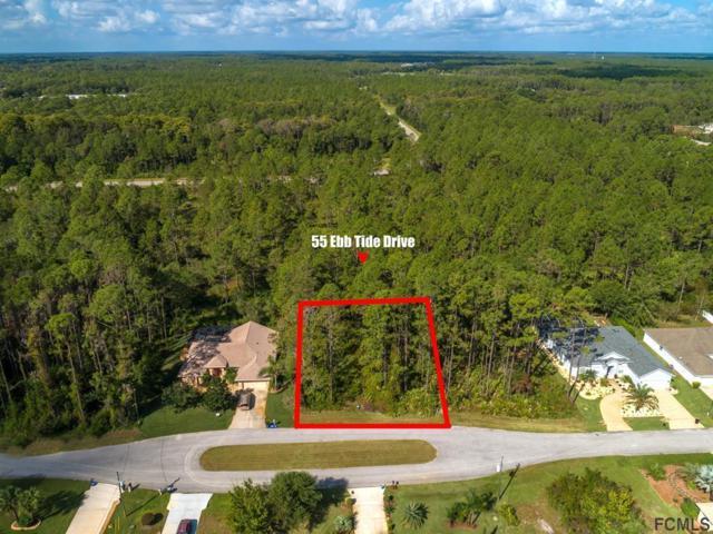 55 Ebb Tide Drive, Palm Coast, FL 32164 (MLS #242091) :: RE/MAX Select Professionals