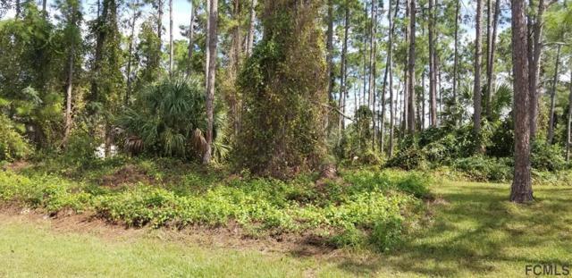 90 Roxboro Drive, Palm Coast, FL 32137 (MLS #242392) :: RE/MAX Select Professionals