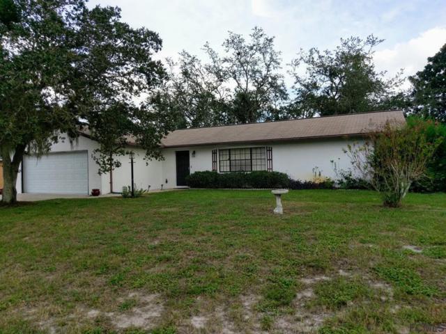 103 Forsythe Ln, Palm Coast, FL 32137 (MLS #242718) :: Pepine Realty