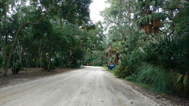 12 Debra Ln, Palm Coast, FL 32137 (MLS #243549) :: RE/MAX Select Professionals