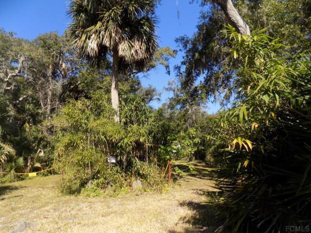 19 Malacompra Road, Palm Coast, FL 32137 (MLS #245283) :: The DJ & Lindsey Team