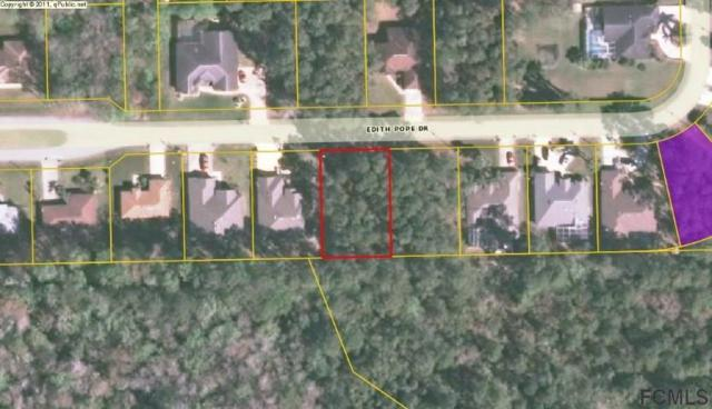 19 Edith Pope Drive, Palm Coast, FL 32164 (MLS #245666) :: RE/MAX Select Professionals
