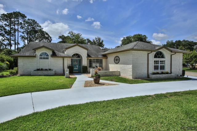 8 Kingsley Circle, Ormond Beach, FL 32174 (MLS #247943) :: Noah Bailey Real Estate Group