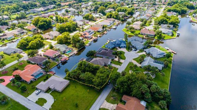 8 Creek Court, Palm Coast, FL 32137 (MLS #250469) :: Memory Hopkins Real Estate