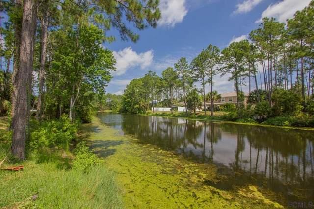 16 Bunker Hill Drive, Palm Coast, FL 32137 (MLS #258280) :: Noah Bailey Group