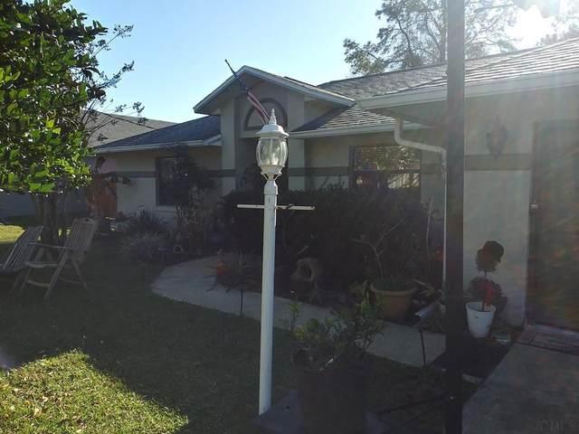 6 Prairie Lane, Palm Coast, FL 32164 (MLS #263922) :: The DJ & Lindsey Team